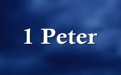 1 Peter 2:21-25 'What does the cross mean?'